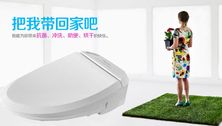 台湾吉田雅格 100a型 智能马桶盖电脑洁身器