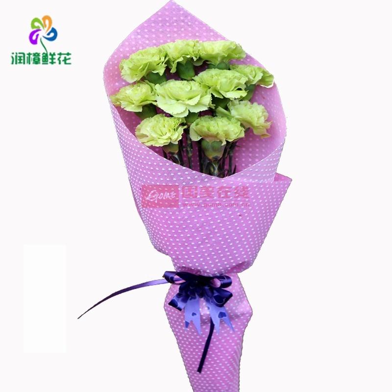 鲜花速递绿康乃馨鲜花花束 母亲节鲜花 生日鲜花 同城