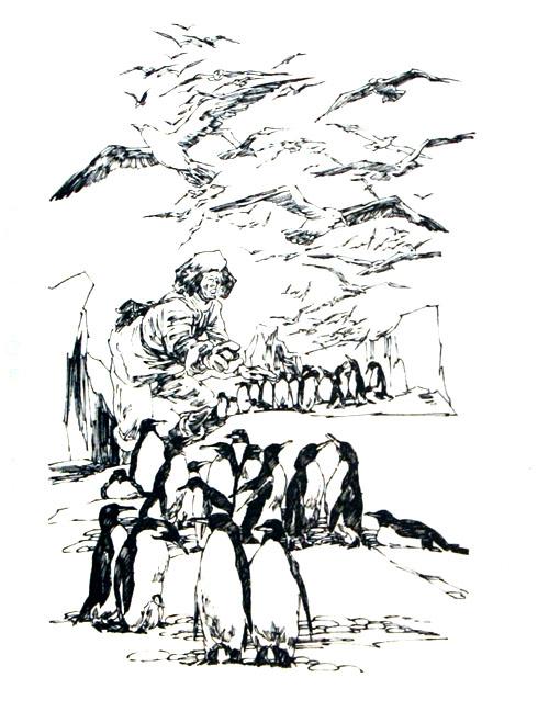 鲸鱼手绘插画 欧洲
